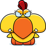 Cartoon Angry Chicken Royalty Free Stock Photography