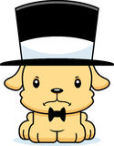 Cartoon Angry Puppy Top Hat Royalty Free Stock Photo