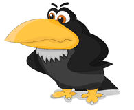 Cartoon angry raven Royalty Free Stock Photos