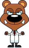 Cartoon Angry Scientist Bear Royalty Free Stock Images