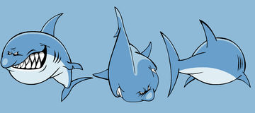 Cartoon angry shark front and rear Royalty Free Stock Photos