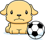 Cartoon Angry Soccer Player Puppy Stock Photo