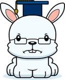 Cartoon Angry Teacher Bunny Stock Photos