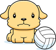 Cartoon Angry Volleyball Player Puppy Stock Image