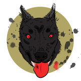 Cartoon angry werewolf face on the bright background. Stock Images