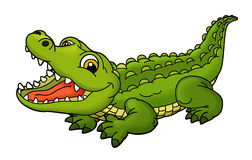 Cartoon animal - alligator - caricature Stock Photo