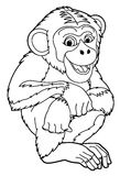 Cartoon animal - ape - caricature. Happy and colorful illustration for the children Stock Images