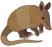 Cartoon animal - armadillo - flat coloring style Royalty Free Stock Image