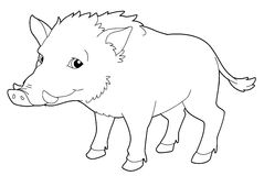 Cartoon animal - boar - isolated - coloring page - illustration Royalty Free Stock Image