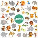 Cartoon animal characters big set Royalty Free Stock Photo