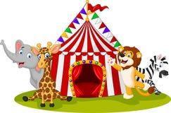 Cartoon animal circus with circus tent Royalty Free Stock Image