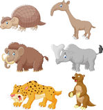 Cartoon animal collection set Royalty Free Stock Photos