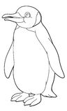 Cartoon animal - coloring page Royalty Free Stock Images