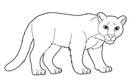 Cartoon animal - coloring page Royalty Free Stock Photos