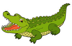 Cartoon animal - crocodile - flat coloring style Stock Photography