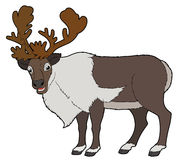 Cartoon animal - deer - flat coloring style Stock Image