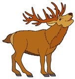 Cartoon animal - deer -  illustration for the children Royalty Free Stock Photo