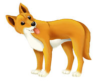 Cartoon animal dingo dog Stock Images