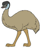 Cartoon animal - emu - illustration for the children Stock Photography