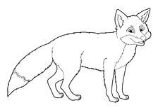 Cartoon animal - fox - coloring page Royalty Free Stock Images