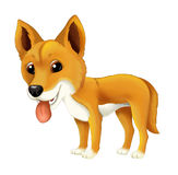 Cartoon animal happy and funny dingo dog Royalty Free Stock Photo