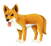 Cartoon animal happy and funny dingo dog Stock Image
