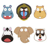 Cartoon animal head set Stock Photography