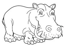 Cartoon animal - hippo - caricature Stock Photos