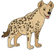 Cartoon animal - hyena - flat coloring style Royalty Free Stock Photography