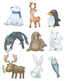 Cartoon animal icon Stock Photos