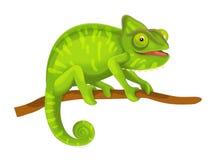 Cartoon animal - illustration for the children Stock Images