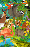 Cartoon animal - illustration for the children Stock Photo