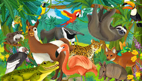Cartoon animal - illustration for the children Stock Image