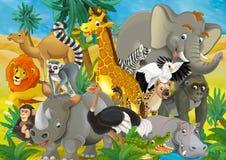 Cartoon Animal - Illustration For The Children Stock Image