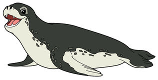 Cartoon animal - killer whale - flat coloring style Royalty Free Stock Image