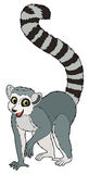Cartoon animal - lemur - flat coloring style Stock Images
