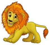 Cartoon animal - lion - caricature Stock Images