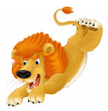 Cartoon animal - lion - caricature Royalty Free Stock Photography