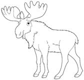 Cartoon animal - moose - coloring page Royalty Free Stock Photography