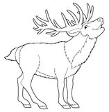 Cartoon animal - reindeer - coloring page Royalty Free Stock Image