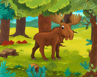 Cartoon animal scene - caricature - moose Royalty Free Stock Images