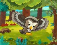 Cartoon animal scene - caricature - owl Stock Photography
