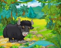 Cartoon animal scene - caricature - yak Stock Photos