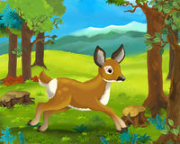 Cartoon animal scene - roe Stock Photo