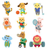 Cartoon animal sport player icons set Royalty Free Stock Image