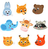 Cartoon Animal. Vector Set On White Background. Stock Images