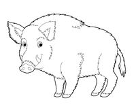 Cartoon animal - wild boar - coloring page Stock Photo