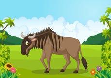 Cartoon animal Wildebeest Stock Photos