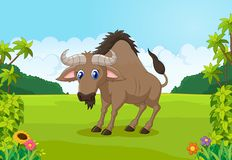 Cartoon animal wildebeest in the jungle Stock Images