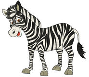 Cartoon animal - zebra - flat coloring style Stock Photos